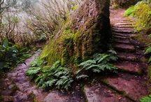 Inspiration / Place, Nature ect