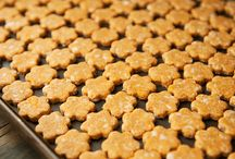 Puppy Biscuits & Recipes
