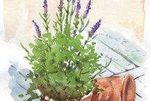 plants to paint