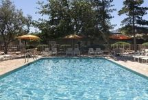 Hotels USA / We highlight the many hotels around the USA