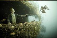 *Подводное царство
