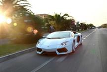 Lamborghini / by SAV PR