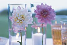 Flowers I like / by Image Eater