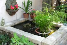 Water Gardens / ponds and container water gardening / by Karen Campbell