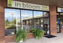 In bloom / Welcome to in bloom, kingston's freshest floral and home decor store