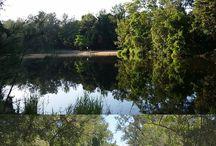Fishing | Moreton Bay Region