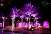 Outdoor Uplighting / #Outdoor #uplighting examples for your #event or #wedding #reception ! #DIY #Inspiration #Ideas