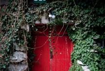 Red Door & Ivy
