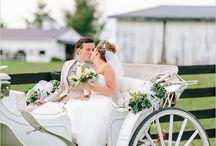 Wedding organization  / LADYCHIC