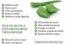 saúde remédios naturais
