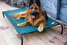 Warm Weather Pet Beds / Help keep your animal feeling cool in the warmer months with these cooling pet beds! / by CozyWinters