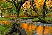 landscapes irish