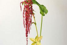 Ikebany / Květinové vazby
