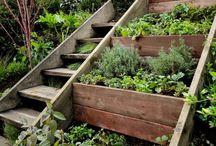 Garten-Treppe