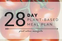 plant based diet meal plan