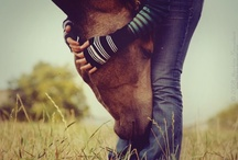 Horse = Love / by Elizabeth Woods