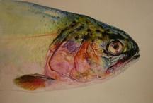 I love a good fish drawing.