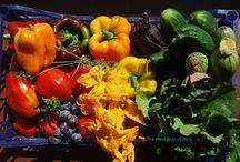 ITALIAN FOOD - PIEMONTE / #italianfood #cibo #gastronomia #drink #wine  #food #eatlocal