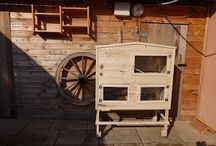 Guinea pigs house