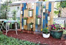 DIY Pallets / by Laura Edmonds