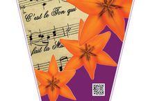 Orange Ton of Life / Orange Ton Lily with music