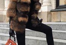 Luxury bitch