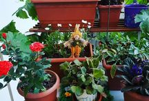 bahçe & çiçek / Love all  the flowers and colors and smiles and sky...