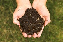 Composting / Educational resources on composting at home