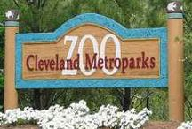 Zoo / All the Zoos I have been to. / by Paul Owens