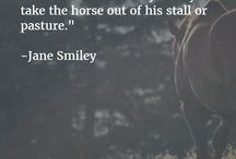 equine quotes / Best quotes about equines!