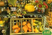 Fall and Halloween Decor / Give your home a touch of the spirit of the autumn season with some of these great decor ideas!