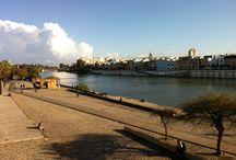 Visita Sevilla / Nustras promociones están en Sevilla. Conoce sus rincones, calles, singularidades, historia...