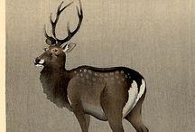 Cervo giacomo ex voto