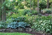 Gardening / by Mary Bastone