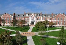 Explore Campus / by University of New Haven Graduate School
