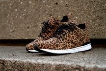 Shoe shoot