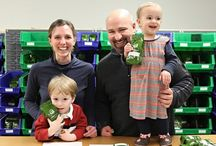 The Arbor Teas Office and Family / Meet our team - including our littlest team members!