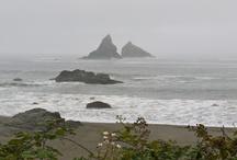 Favorite Places & Spaces / Oregon
