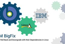 IBM / IBM Blog Post