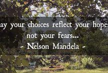 #quoteoftheday / #quotes #quote #quoteoftheday