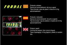 Joan Marcé Casas / Cooperativa de Fruita d'Avinyonet del Penedés