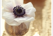 Inspiration // Flowers