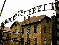{The Holocaust} / by Pearl Lambert