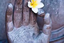 Zen / Ambiance zen attitude