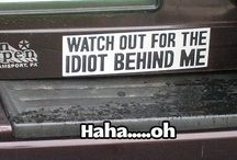 bumper stickers/plates/window stickers