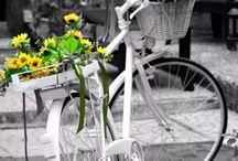 bikes flowers