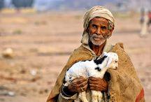 Lugares que visitar: Beduinos