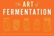 Fermentation & Co