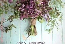Greetings & Engagement