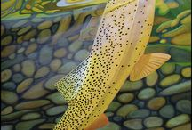 Trout Fishing / flyfishing / Trout fishing and flyfishing board, with fishing an fishing related wallpapers and informational pins.